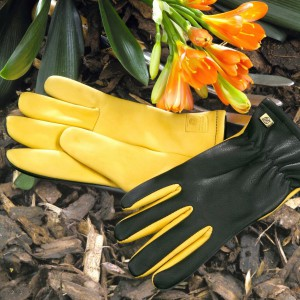 Gold Leaf 'Dry Touch' Gardening Gloves