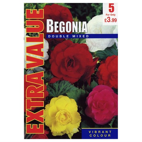 Taylors Bulbs Begonia Mixed Doubles (5 Pack) (ESV501)