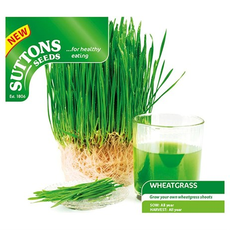 Suttons Wheatgrass Shoots Seeds (183080)