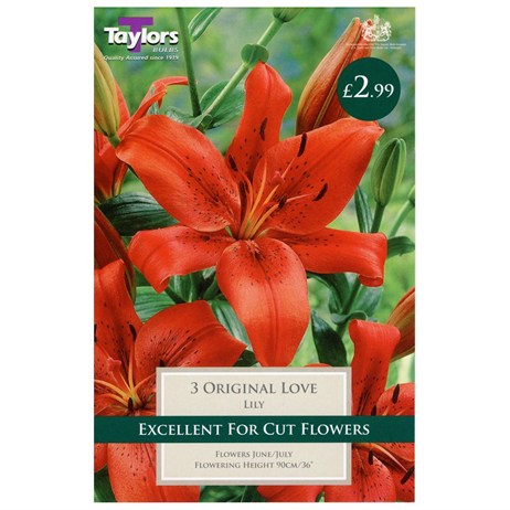 Lily Original Love (Pack of 3) - Taylors Bulbs (TS525)