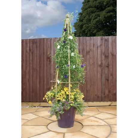 Zest 4 Leisure Large Clematis Flowerbell (2 Pack) (DIRECT DISPATCH)