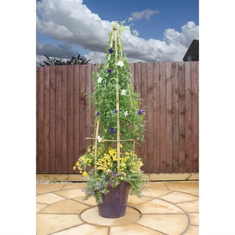Zest 4 Leisure Small Clematis Flowerbell (2 Pack) (DIRECT DISPATCH)