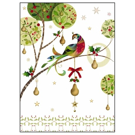 Noel Tatt 8  Pack Charity Christmas Cards - Bird on Branch - 12.5x17cm (41508)