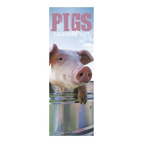 Otter House - Pigs Slim Calendar 2017 (26687)