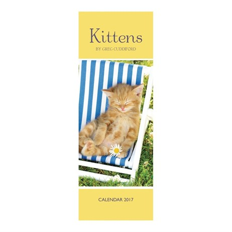 Otter House - Kittens By Greg Cuddiford Slim Calendar 2017 (26949)