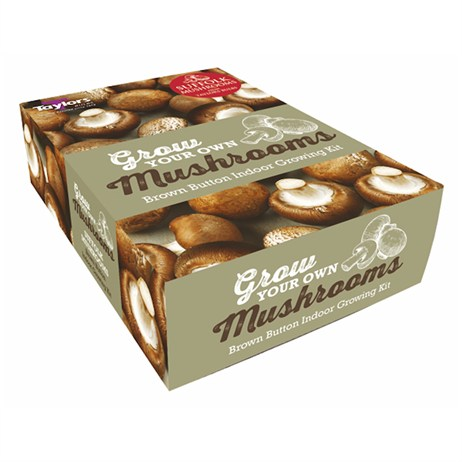 Taylors Bulbs Brown Button Mushroom Kit (Single Pack) (BBKIT)