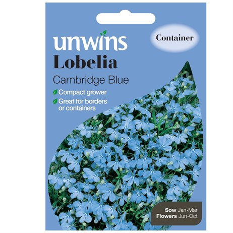 Unwins Seeds Lobelia Cambridge Blue (30210559)