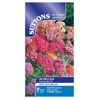 Suttons Achillea Seeds - Summer Berries (100120)