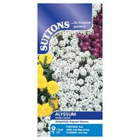 Suttons Alyssum Seeds - Snow Carpet (Improved Strain) (101016)