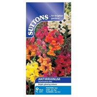 Suttons Antirrhinum Seeds - Illumination Mix (102410)