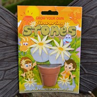 Fun Seeds - Grow Your Own: Flowering Stones