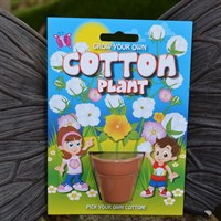 Fun Seeds - Grow Your Own: Cotton Plant