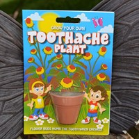 Fun Seeds - Grow Your Own: Toothache Plant