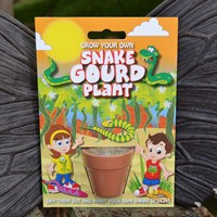 Fun Seeds - Grow Your Own: Snake Gourd Plant
