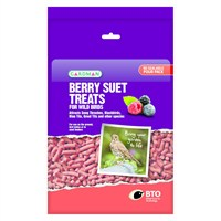 Gardman Berry Suet Treats 550g (A04113)