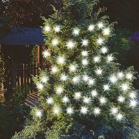 Cole & Bright 50 Solar Extra Large Bulb String Lights (18265)