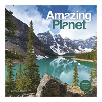 Otter House - Amazing Planet Wall Calendar 2017 (26501)