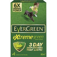 EverGreen Extreme Green 80m2 2.8kg (015022)