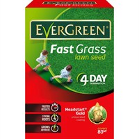 Evergreen Fast grass Lawn Seed - 80m² (118016)
