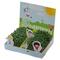 Little Gardeners Cress Garden Kit (24692)