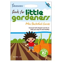Little Gardeners Mini Basketball Carrots Seeds (19345)