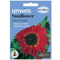 Unwins Seeds Sunflower Velvet Queen (30210590)