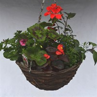 Wicker Hanging Basket 12 Inch