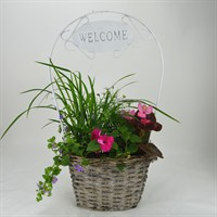 Wicker Welcome Basket - Medium