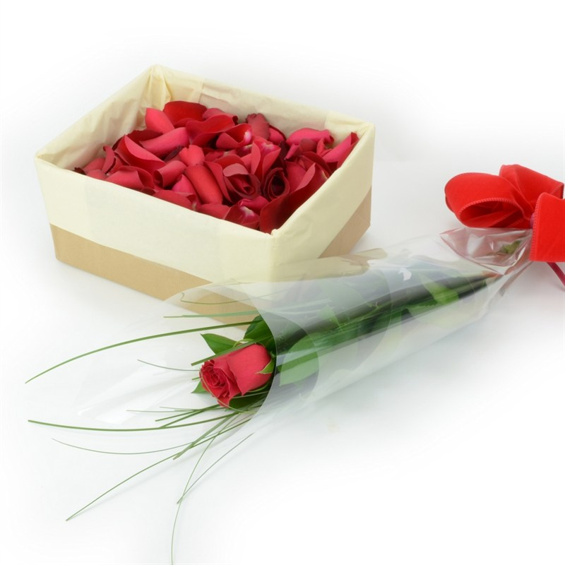 Single long stem red rose and rose petal valentine 39 s day for Individual rose petals