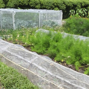 Cloches and Grow Tunnels