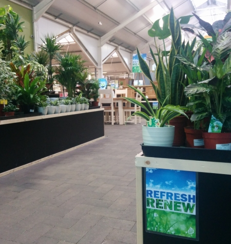 Houseplants range at Longacres