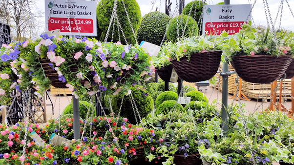 hanging baskets at Longacres