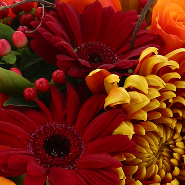Autumn Bouquets & Arrangements