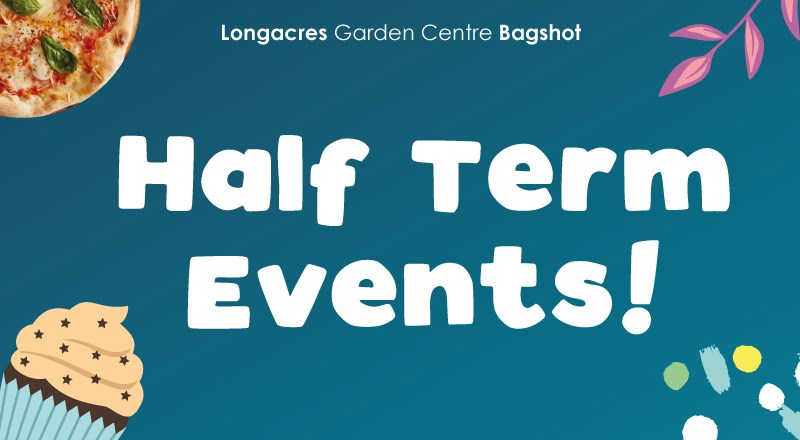 Half-Term-Events-Feb-Blog-header-2020.jpg