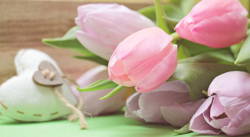 Mother-Day-Floristry-Workshops-2019-HEADER.jpg
