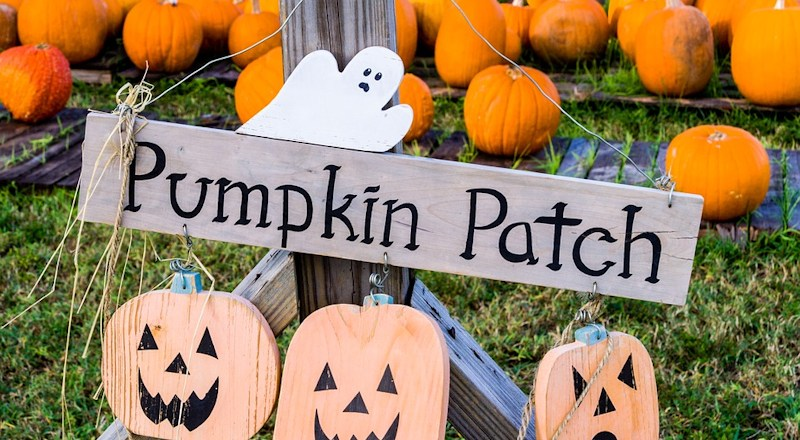 pukin-patch-131017-v2.jpg