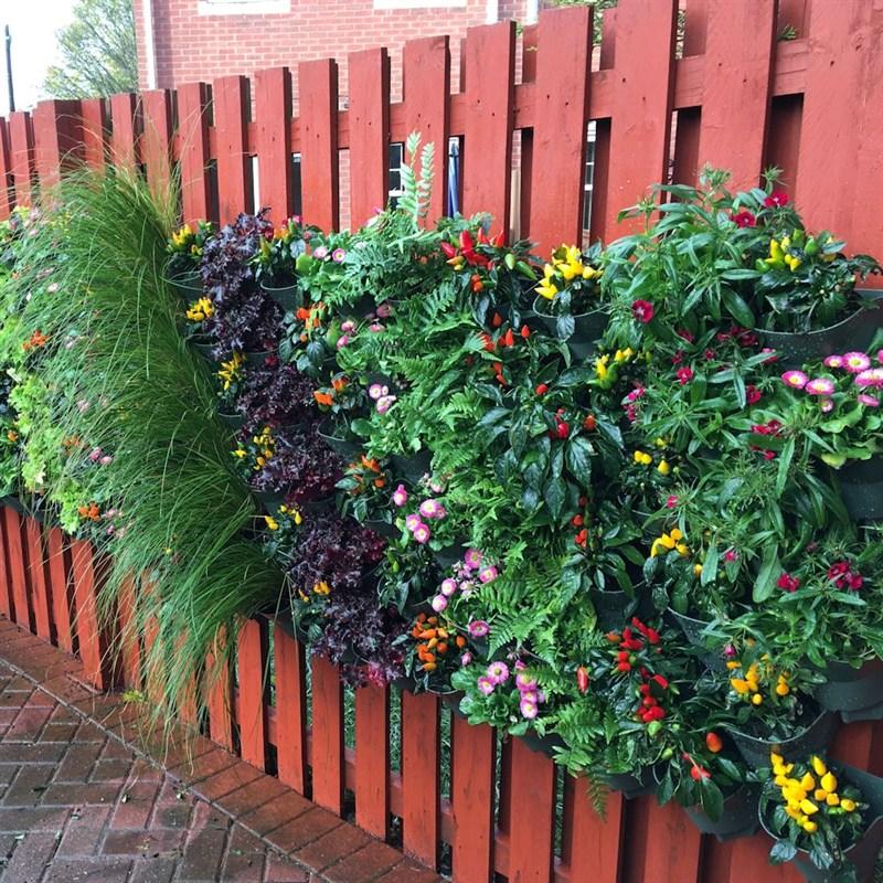 Wonderwall vertical garden rop2936 for Vertical garden containers