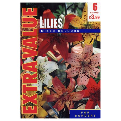 Taylors Bulbs Lilies Mixed Colours (6 Pack) (ESV505)
