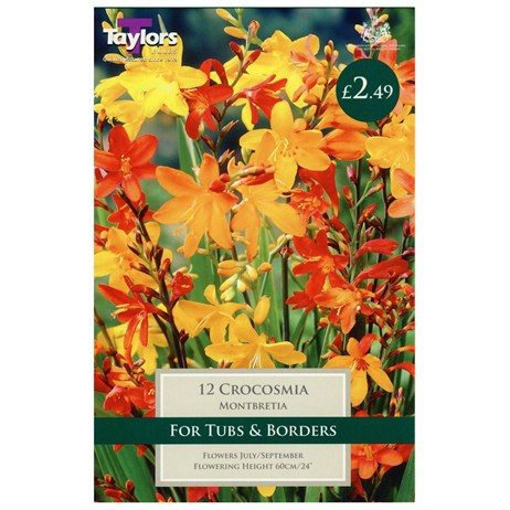 Taylors Bulbs Montbretia (12 Pack) (TS761)