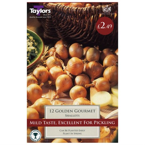 Taylors Bulbs Shallot Golden Gourmet (12 Pack) (VP300)