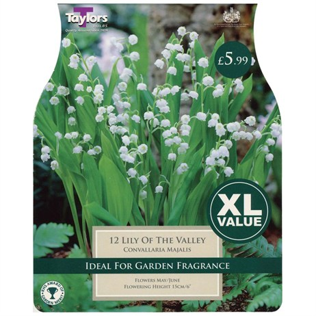 Taylors Bulbs Lily Of The Valley (Convallaria Majalis) (12 Pack) (XL585)