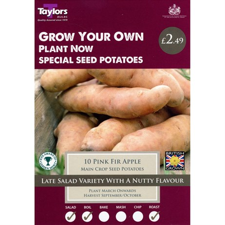 Taylors Bulbs Seed Potatoes Pink Fir Apple (Main Crop) (10 Pack) (VP492)