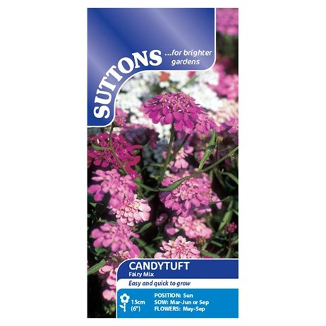 Suttons Candytuft Seeds - Fairy Mix (107612)