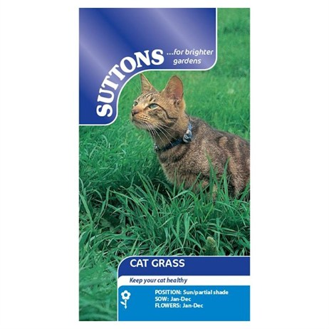 Suttons Cat Grass Seeds (108464)