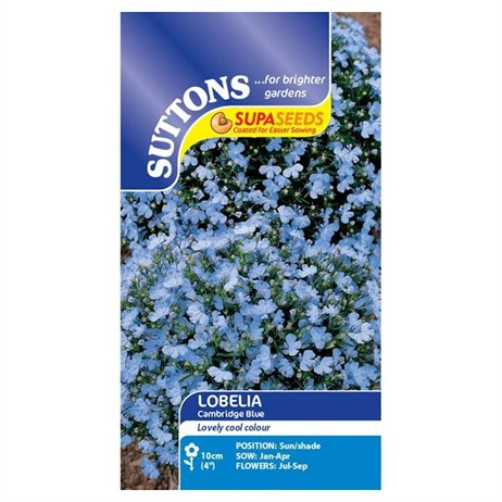 Suttons Lobelia Seeds - Cambridge Blue (119455)