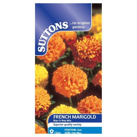 Suttons Marigold French Seeds - Boy-O-Boy Mix (121625)