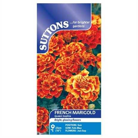 Suttons Marigold French Seeds - Queen Sophia (121803)