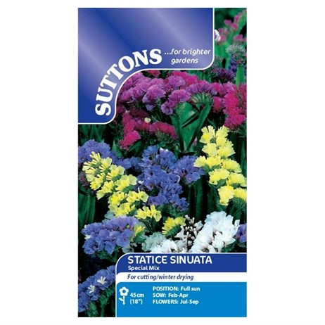 Suttons Statice Seeds - Special Mix (132098)