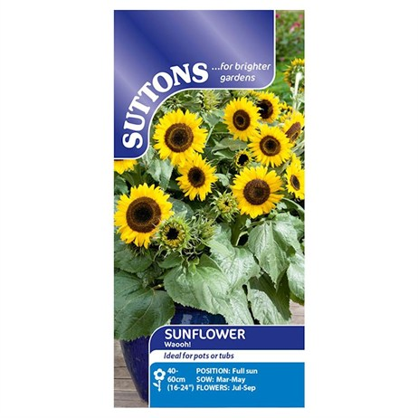 Suttons Sunflower Seeds - Waooh! (133206)