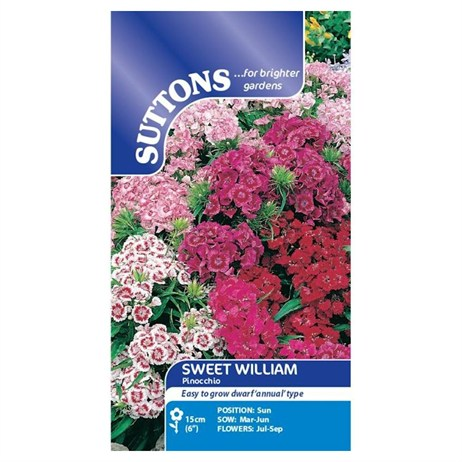 Suttons Sweet William Seeds - Pinocchio (134862)
